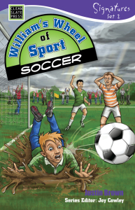 williams-wheel-of-sports-soccer